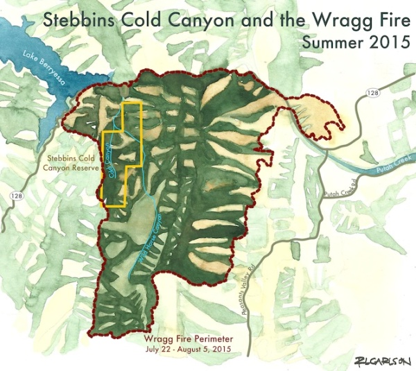 Lake Berryessa Fire Map.Wragg Fire Map 8 5 2015 Wildfire To Wildflowers