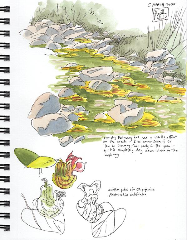StebbinsSketchbook8_2020Mar5
